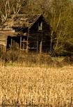 Rural Warm Decay II