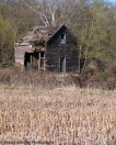 Rural Decay II